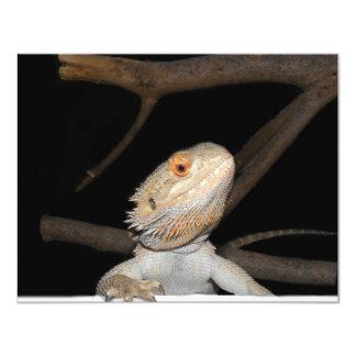Dragón barbudo 2 invitación 10,8 x 13,9 cm