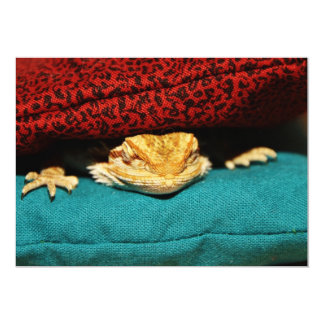 Dragón barbudo acogedor invitación 12,7 x 17,8 cm