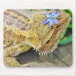 Dragón barbudo bonito tapetes de raton