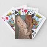 Dragón barbudo cartas de juego