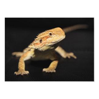 Dragón barbudo curioso invitación 12,7 x 17,8 cm