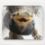 Dragón barbudo del este - barbata de Pogona Alfombrilla De Raton