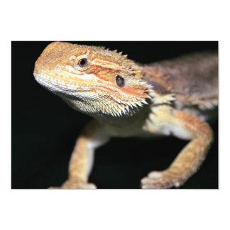 Dragón barbudo derecho invitación 12,7 x 17,8 cm