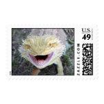 Dragón barbudo feliz estupendo sello