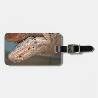 Dragón barbudo hermoso etiqueta para equipaje
