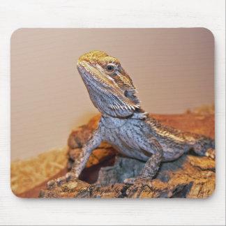 Dragón barbudo Mousepad