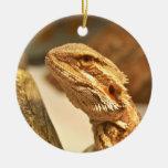 Dragón barbudo ornamentos de navidad