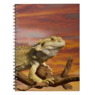 Dragón barbudo (Pogona Vitticeps) en rama, Libros De Apuntes