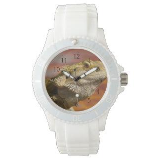 Dragón barbudo (Pogona Vitticeps) en rama, Relojes De Mano