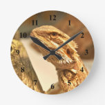 Dragón barbudo relojes de pared