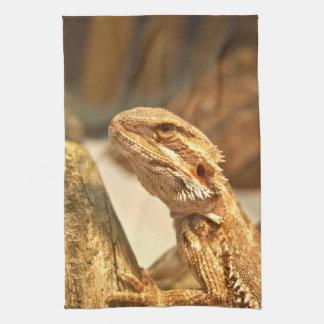 Dragón barbudo toallas de mano