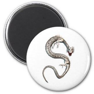 Dragón blanco imán redondo 5 cm