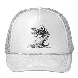 Dragon Clothing 42 Mesh Hat