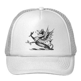 Dragon Clothing 50 Trucker Hats