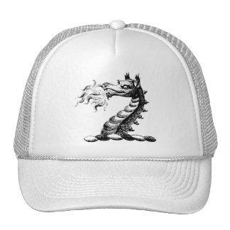 Dragon Clothing 5 Trucker Hats