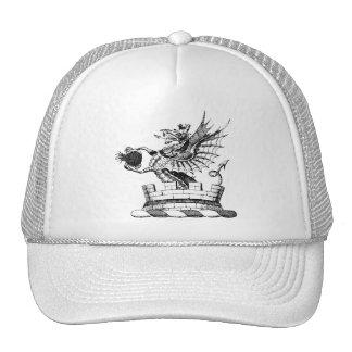 Dragon Clothing 6 Trucker Hats
