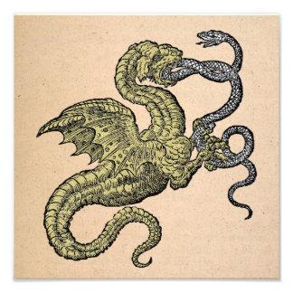 Dragón contra serpiente fotografía