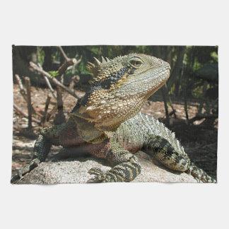 Dragón de agua australiano toalla
