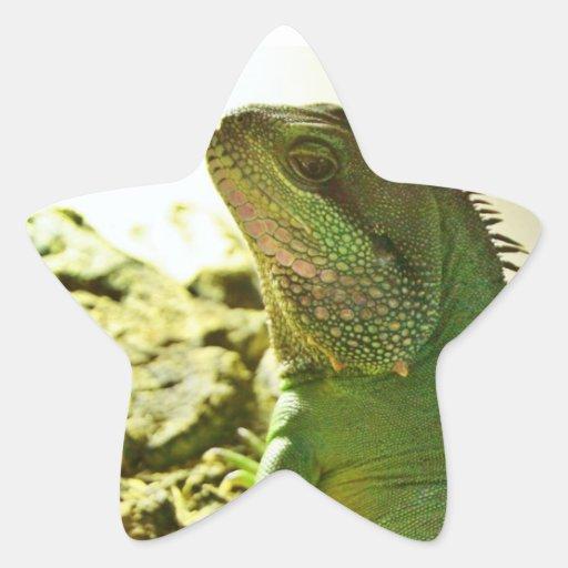 Dragón de agua chino pegatina en forma de estrella