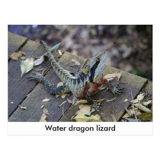 Dragón de agua hermoso tarjeta postal