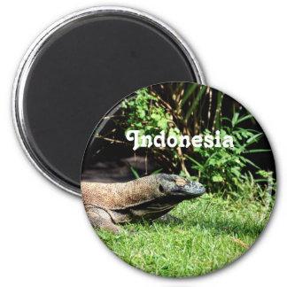 Dragón de Indonesia Komodo Imán De Nevera