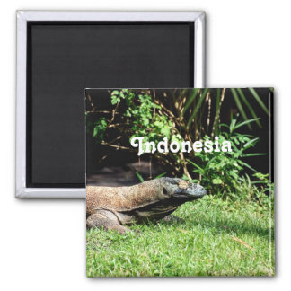 Dragón de Indonesia Komodo Imán Para Frigorífico