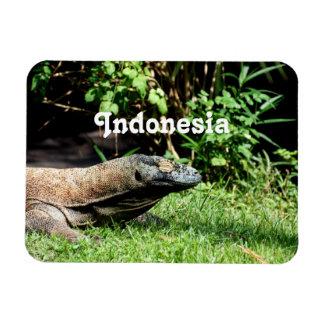 Dragón de Indonesia Komodo Iman Rectangular