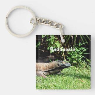 Dragón de Indonesia Komodo Llaveros