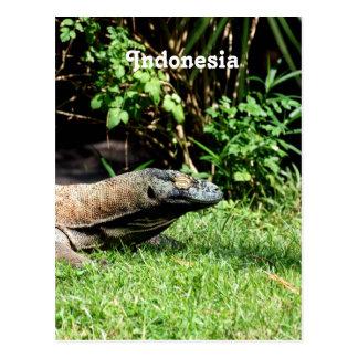Dragón de Indonesia Komodo Tarjetas Postales