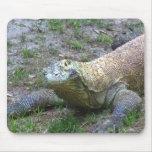 Dragón de Komodo Alfombrilla De Raton
