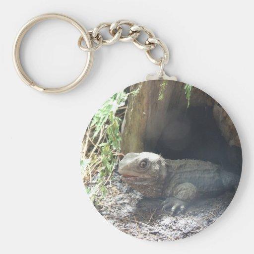 Dragón de Komodo que sale de su hogar debajo de ár Llaveros