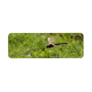 Dragón de vuelo etiqueta de remite