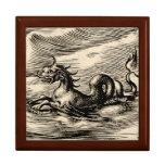 Dragón del mar en el ecuador cajas de recuerdo