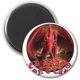 Dragon Dont Care 2 Inch Round Magnet