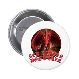 Dragon Dont Care Pin