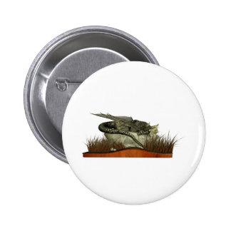 Dragón el dormir en una roca pin
