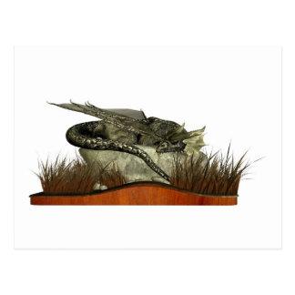 Dragón el dormir en una roca postal