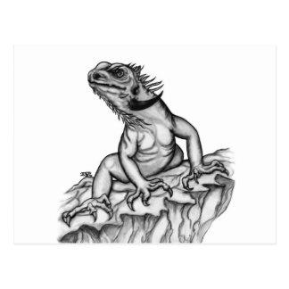 Dragón en la roca tarjetas postales