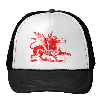 Dragon Engraving - Red Trucker Hat