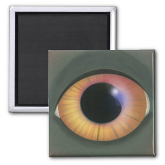 Dragon Eye 2 Inch Square Magnet