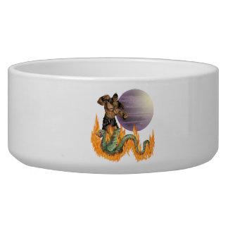 Dragon Fighter Pet Bowl (2) sizes