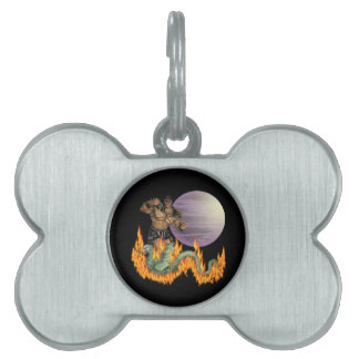 Dragon Fighter Pet Tag