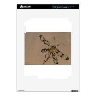 dragon fly 1990 skin for iPad 3