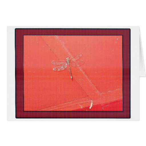 DRAGON FLY - A STUDY IN RED GREETING CARD