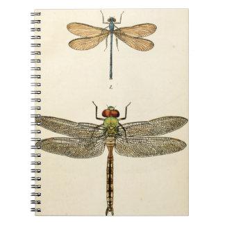 Dragon Fly Art Notebook