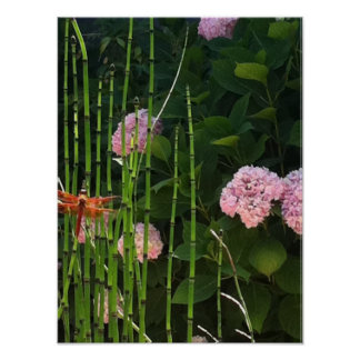 Dragon Fly, Horsetail and Hydrangeas Poster