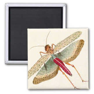 Dragon Fly Painting - Magnet 1