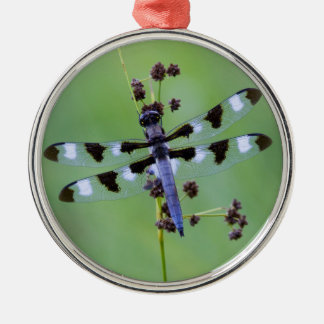 Dragon fly perched on grass, Canada Metal Ornament