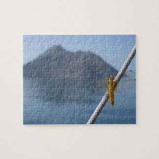 Dragon Fly Jigsaw Puzzles