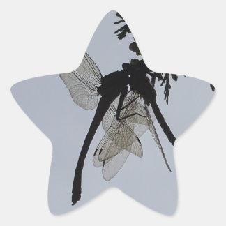 Dragon fly star sticker
